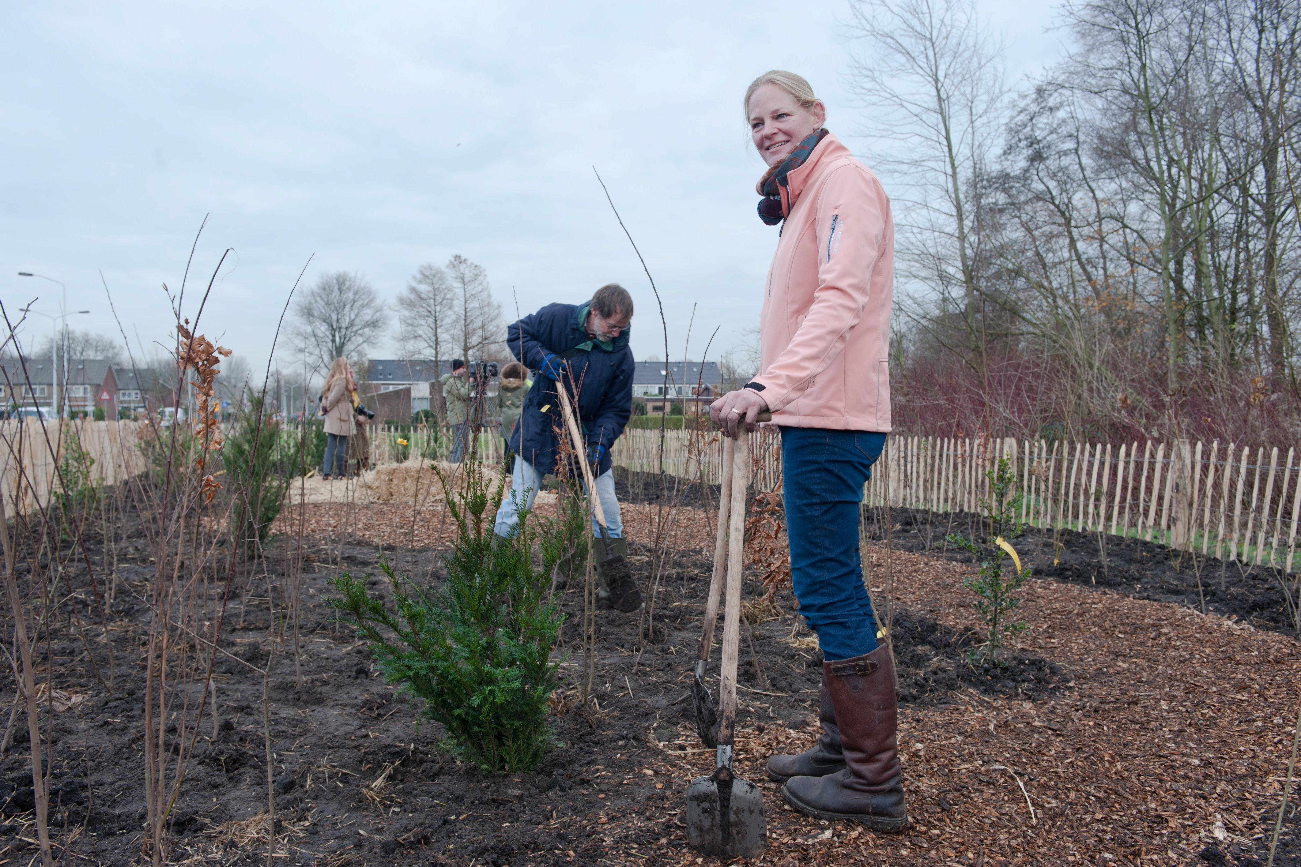 Volunteers have helped create Tiny Forests in the Netherlands (IVN Natuureducatie/PA)