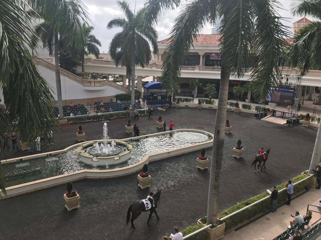 All eyes will be on Gulfstream Park on Saturday night (PA)