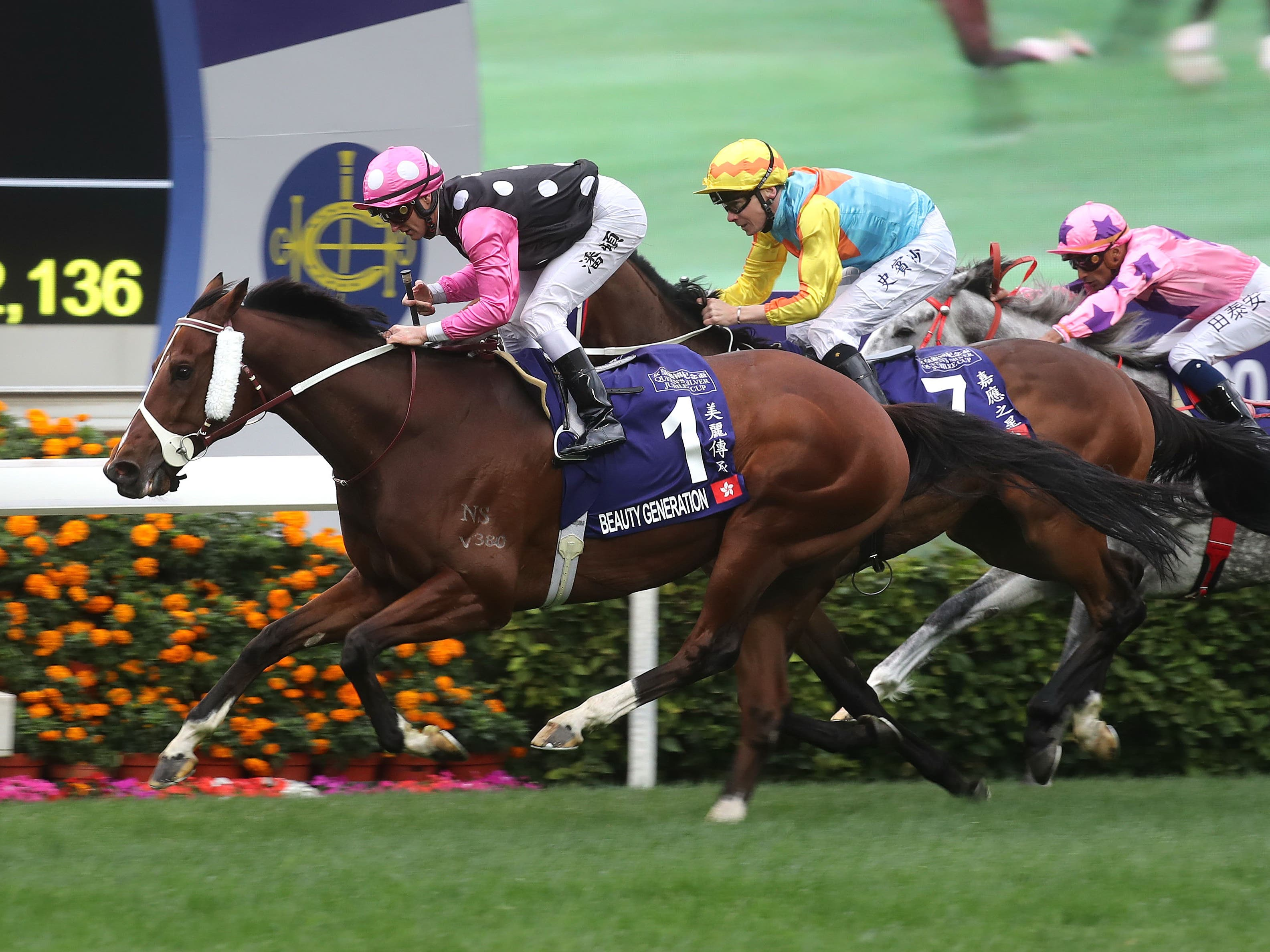 Beauty Generation bounced back to winning ways last time out (Hong Kong Jockey Club)
