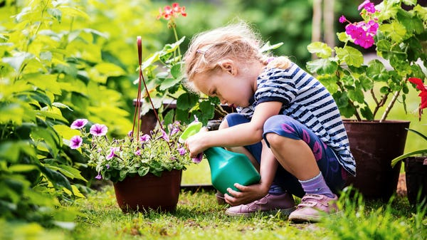 National Children's Gardening Week: Books to inspire young growers