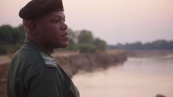 Video: How to take part in a 30,000km bike ride to help Africa's rangers