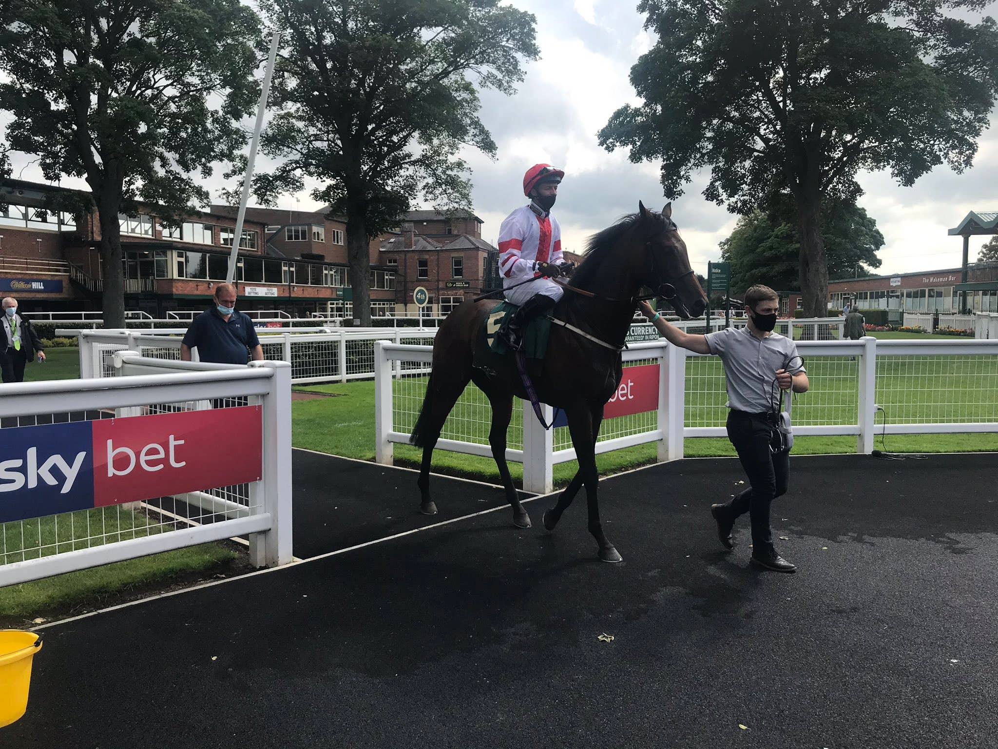 Fishable looks a promising type for Tim Easterby (Ripon Races)