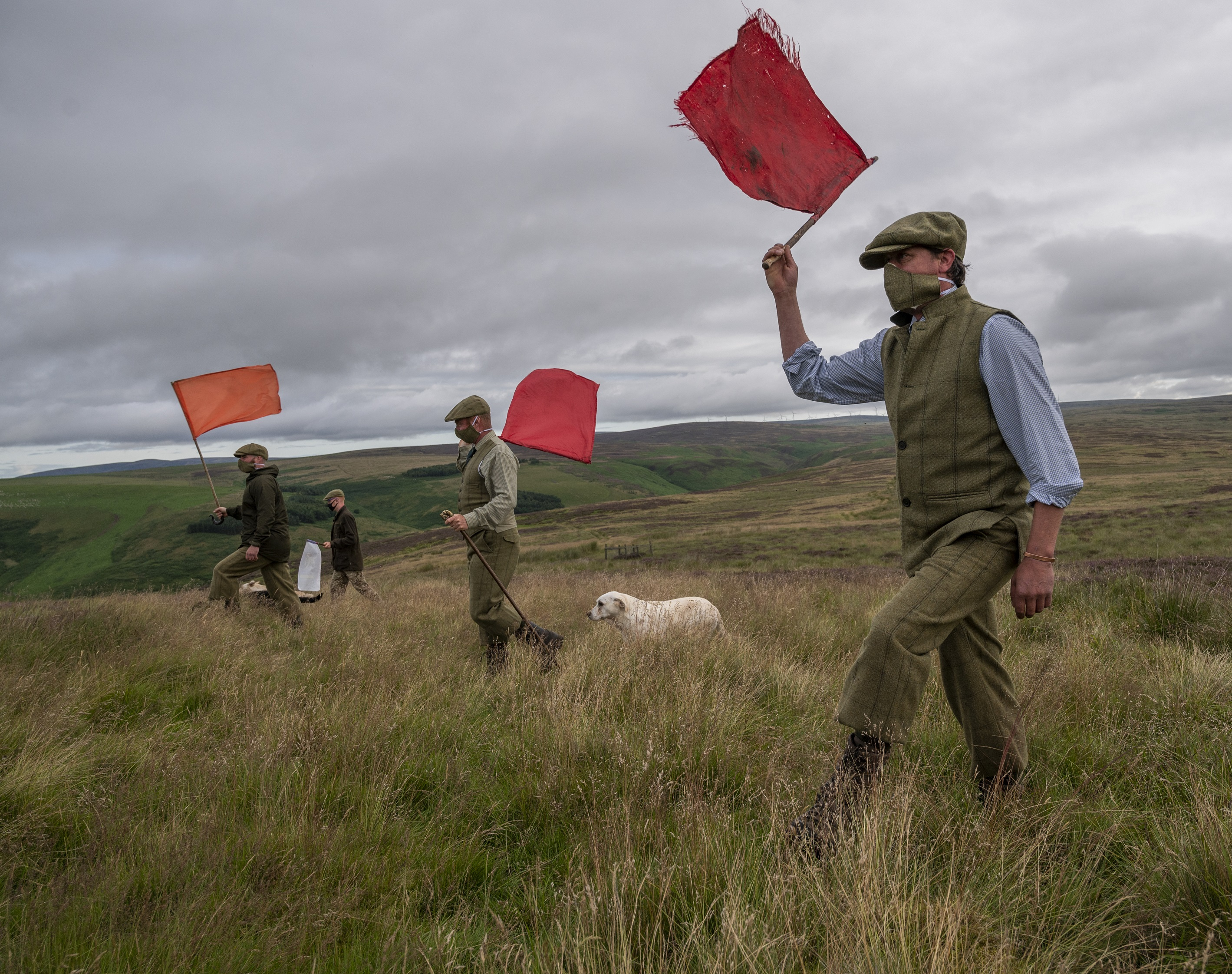 Grouse shoot preparations