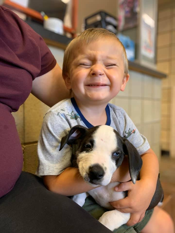 Bentley with Lacey the puppy, who has a cleft lip