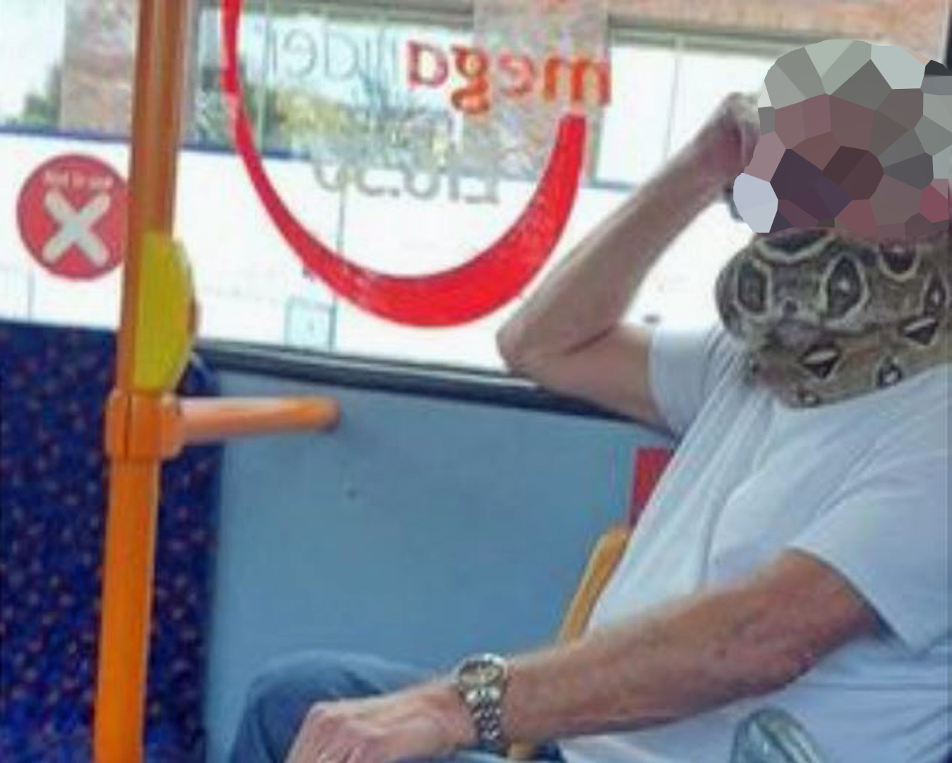 A man 'wearing a snake as a mask'