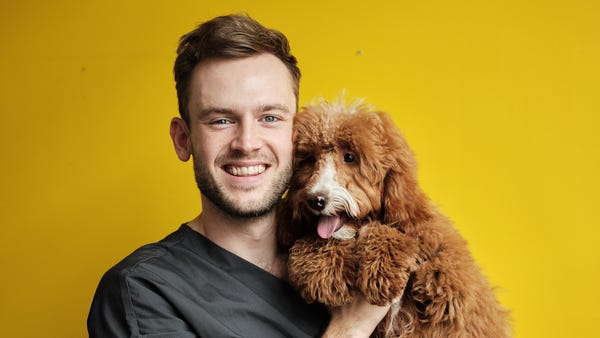 Rory the Vet: What your family should consider before getting a pet