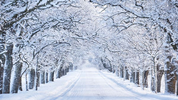 7 weird and wonderful things you didn't know about snow