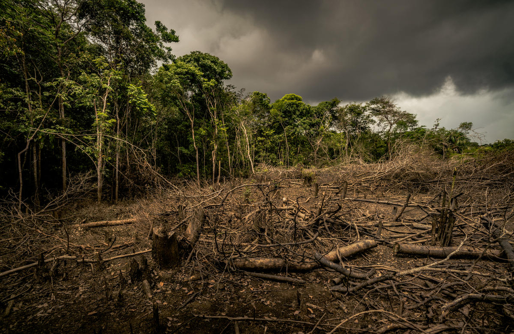Amazon deforestation in Colombia