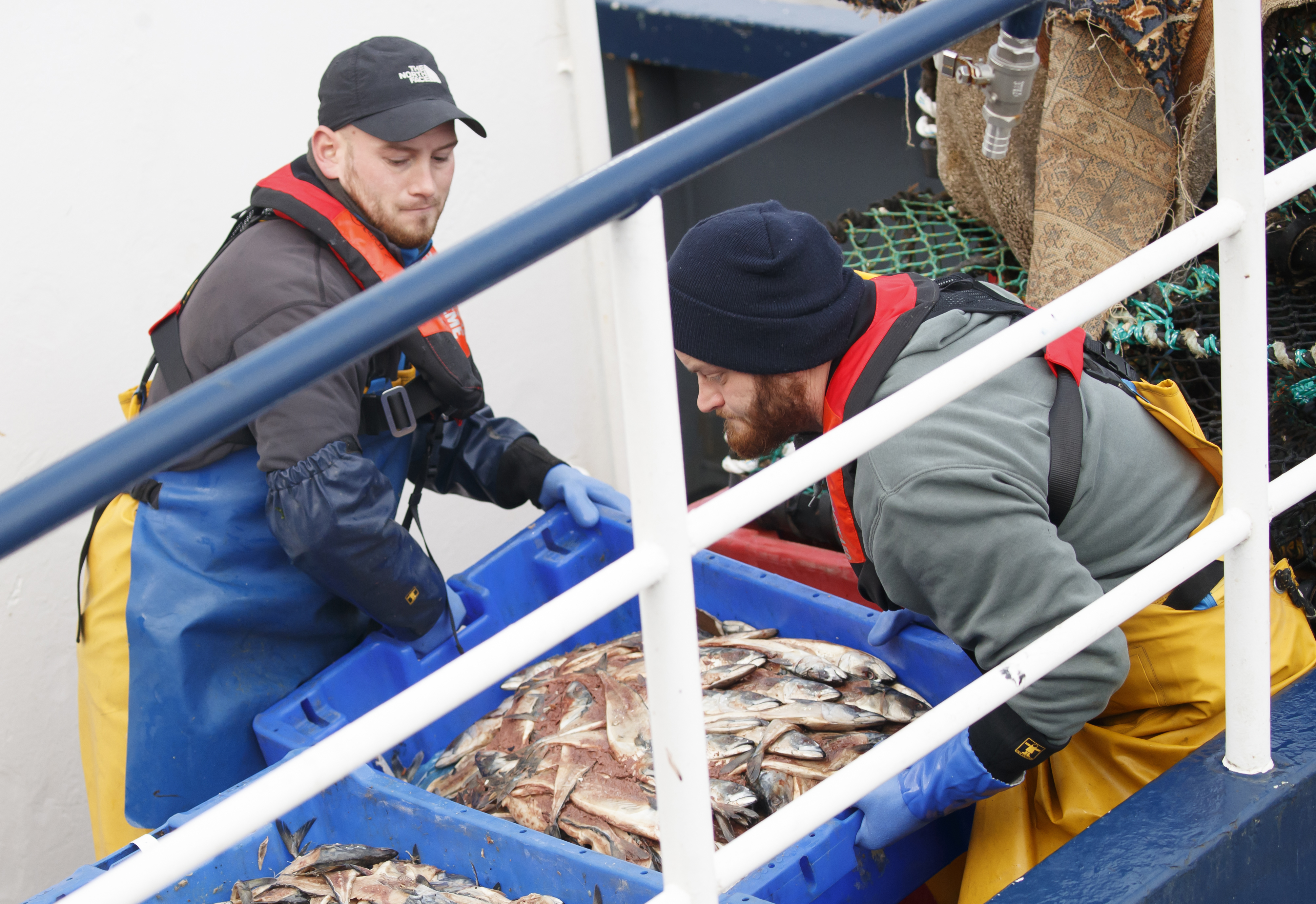 Exports of fish and seafood have been hit by delays