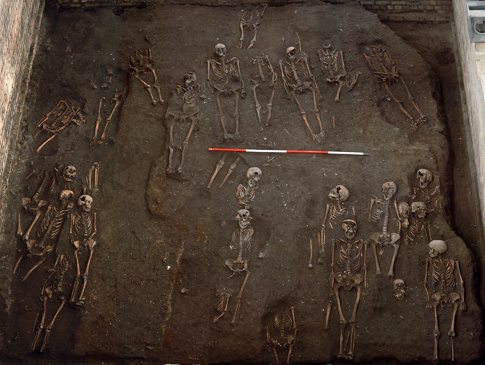 The remains of individuals unearthed on the former site of the Hospital of St John the Evangelist