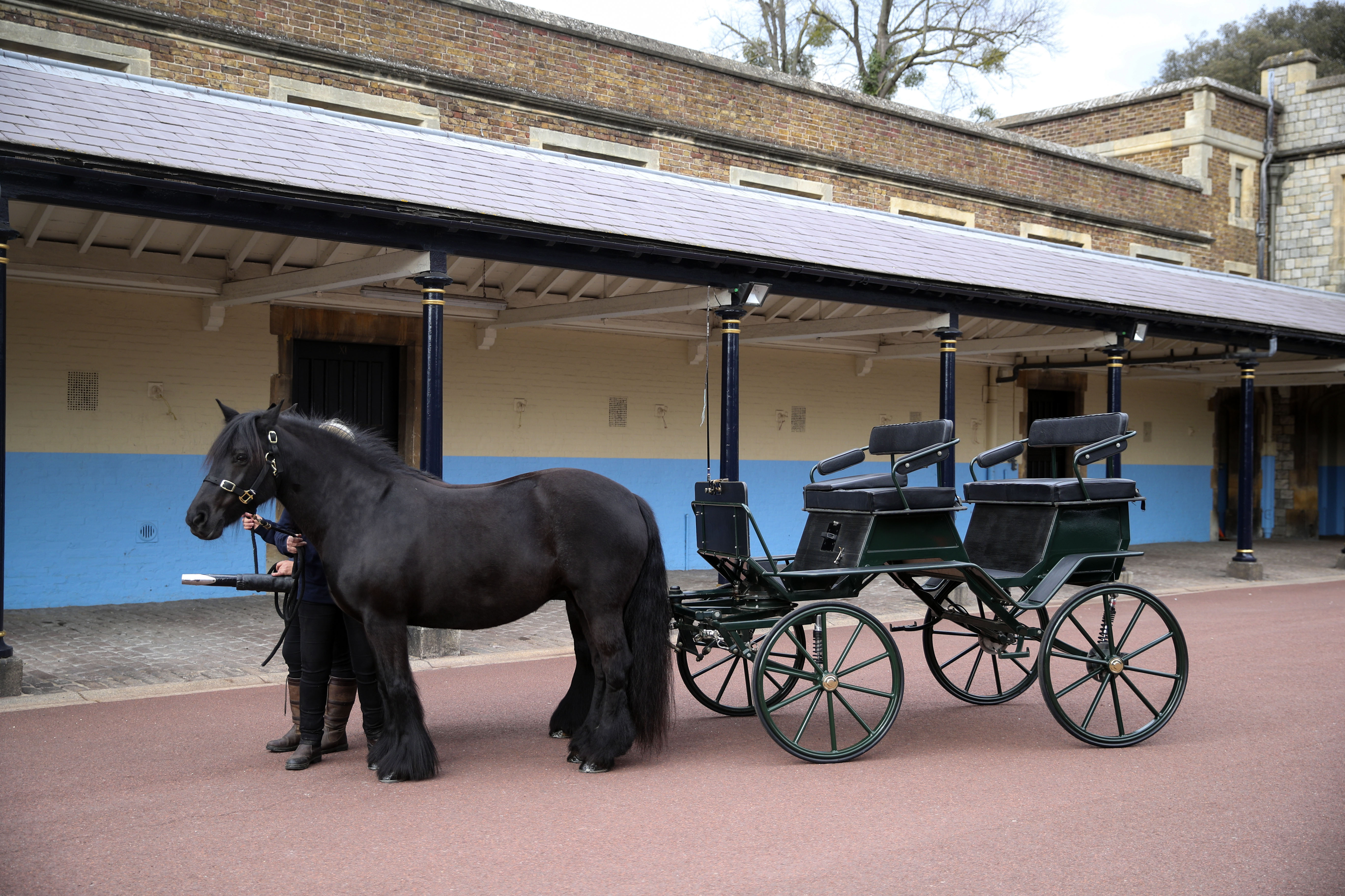 Balmoral Nevis and Notlaw Storm with the carriage