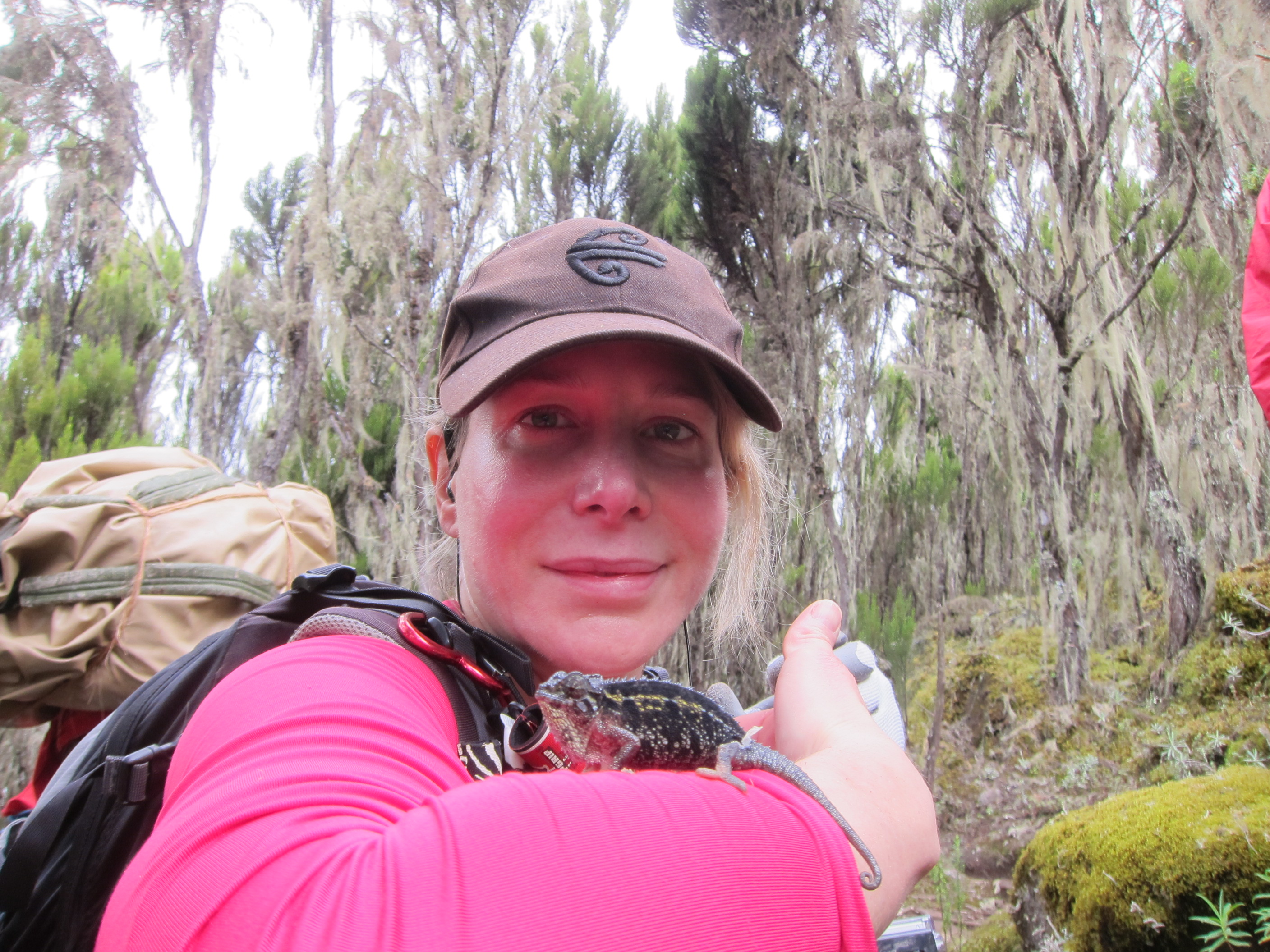 Vanessa poses with a lizard at Mount Kilimanjaro - Vanessa is wearing a pink top, balancing a lizard on her forearm. She is wearing a brown cap, and there are trees in the background  - 5dbcb534 ae42 4847 93f1 918f9606d880 - 'I could never say no to space': British-American explorer aims for the stars